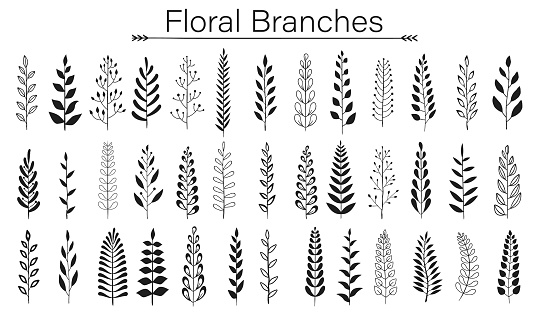 Floral branches icon
