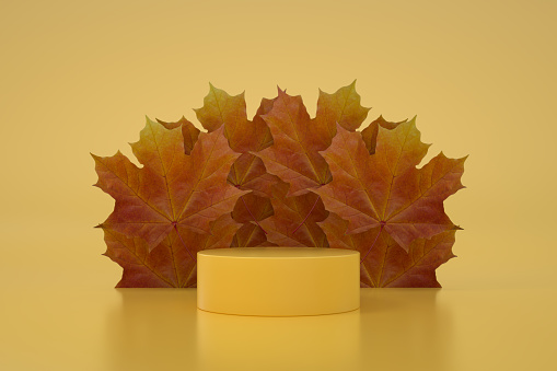 3D Empty Product Stand, Platform, Podium with Autumn Leaf Yellow Background