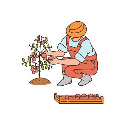 Planting character