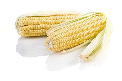 여름 간식 옥수수