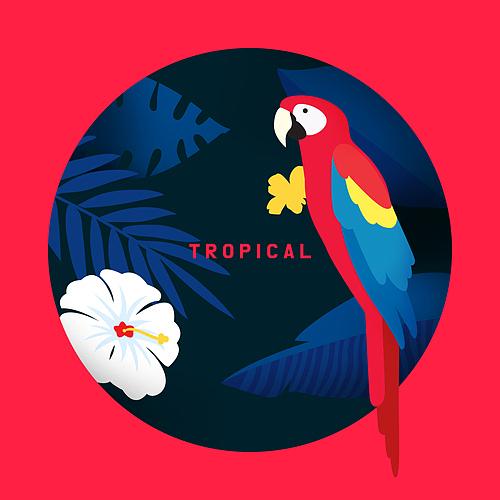 Tropical Summer
