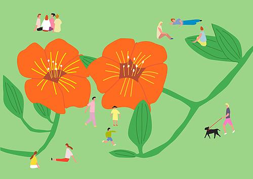 여름과 꽃