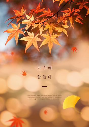 가을 감성