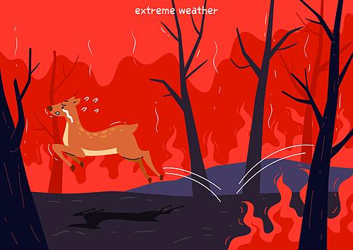 환경보호 (환경), 기후변화, 산, 산불, 불길 (불), 야생동물, 사슴 (발굽포유류)