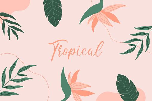 tropicalbackground11