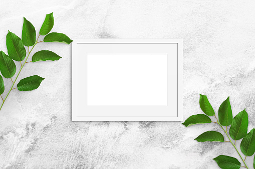 leaves on a marble background