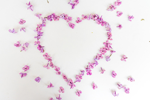 Heart of lilac flowers. Heart-shaped flower frame with space for text or photo