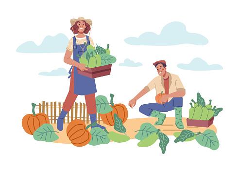 농업의 수확기