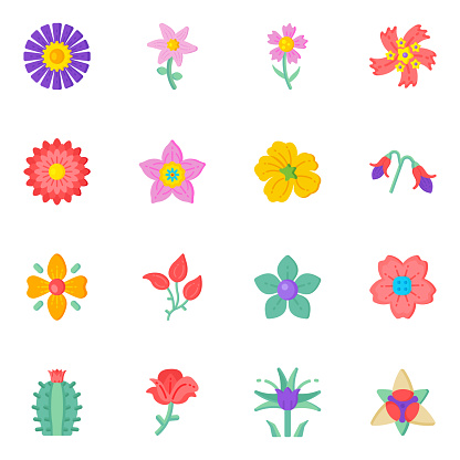 Set of Flower Designs Flat Icons in Editable Style