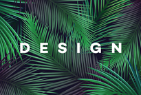Set of Bright tropical background