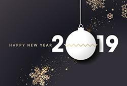 해외사진_Happy New Year 2019