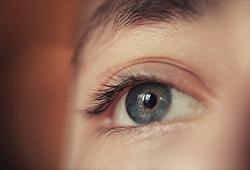 해외사진_Eye - Human body