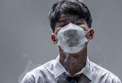 국내사진_먼지