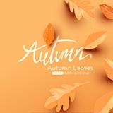 가을 단풍 배경