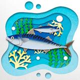 물고기 도감