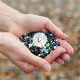 플라스틱 환경문제